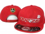 NRL Snapbacks Gorras Dragons(2)