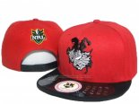 NRL Snapbacks Gorras Dragons(3)
